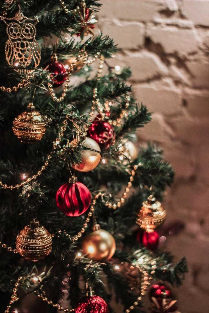 клубы москвы на рождество
