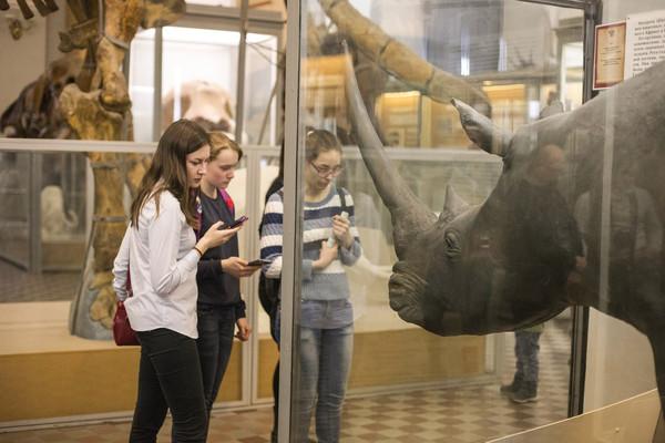 Квест «Ледниковый период» в Зоологическом музее