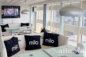 MILO | CLUB