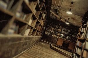 2033. Библиотека