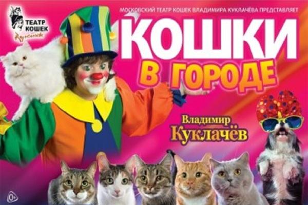 Московский театр кошек Владимира Куклачева