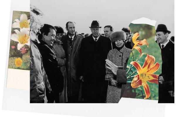 Агентство сингулярных исследований: Flower Power. Архив
