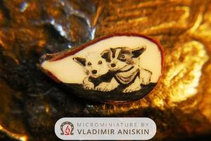 Владимир Анискин. Анискин и микроскоп