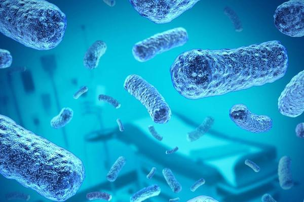 Супермикробы: борьба за жизнь