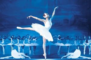 """Балет """"Лебединое озеро"""" с симфоническим оркестром"""