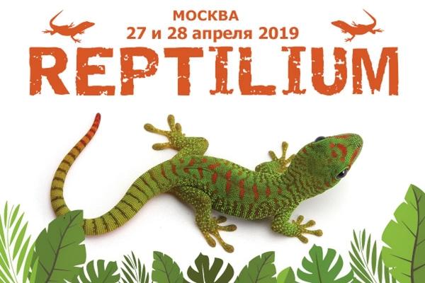 Рептилиум