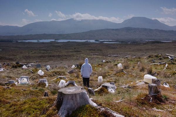 Грядущий мир: экология как новая политика. 2030–2100