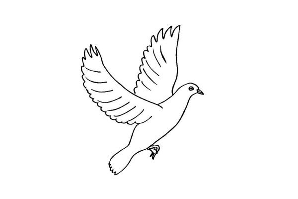 О, да, любовь вольна, как птица…