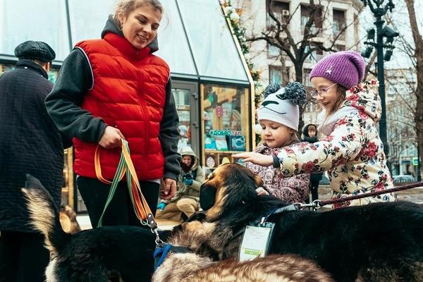 Ветеринарная станция и «Школа груминга» на Тверском бульваре