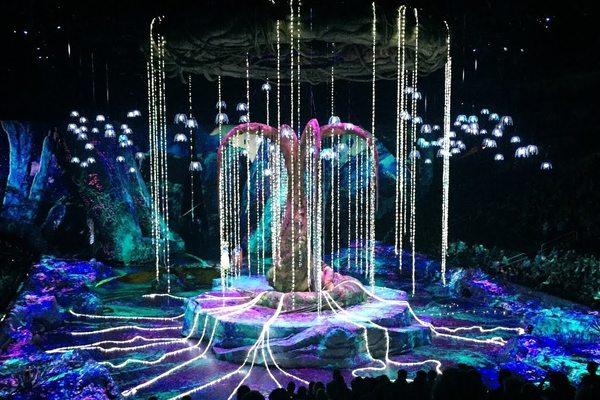 Cirque du Soleil. Шоу Toruk