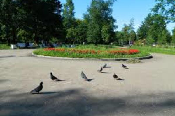 Выборгский сад