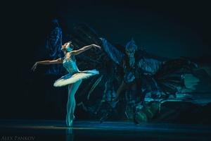 Лебединое озеро. Московский театр классического балета