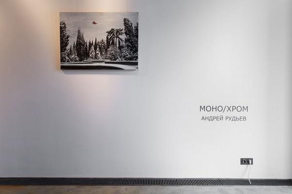 Андрей Рудьев. МОНО/ХРОМ