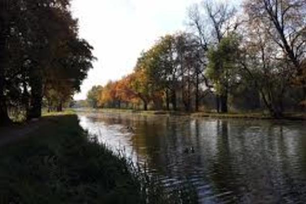 Луговой (Петергоф)