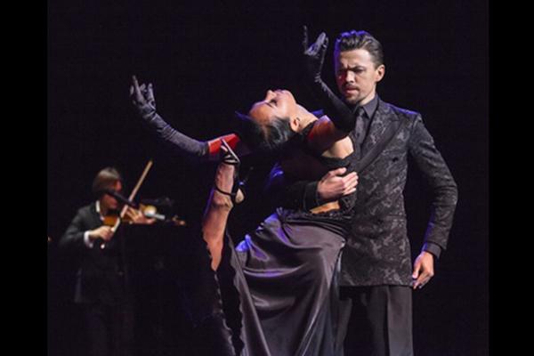 Двадцать оттенков танго