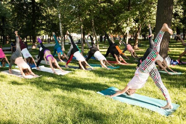 Йога в парке Таганский