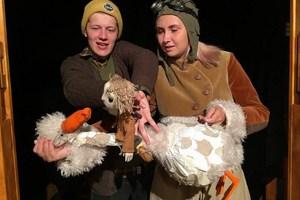 Удивительное путешествие Нильса с дикими гусями