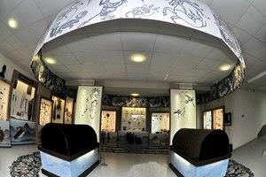 Музей истории и культуры народов Сибири и Дальнего Востока