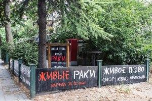 Живая точка на Московской
