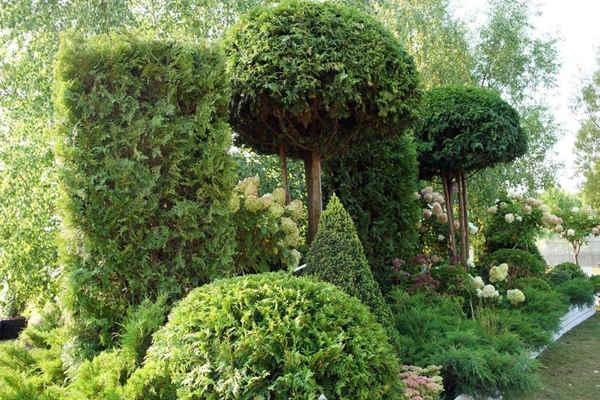 Сады, вдохновленные историей