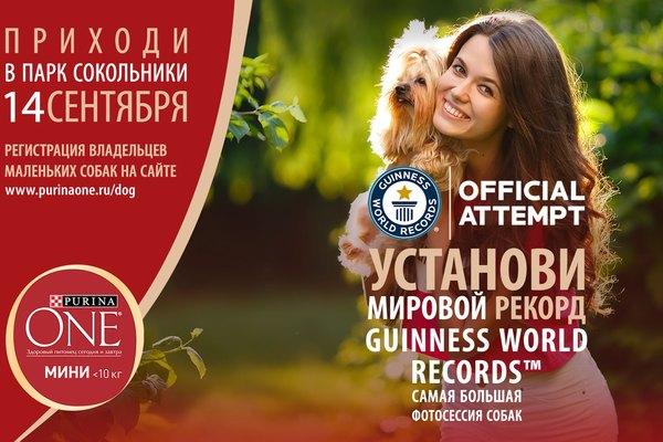 """Guinness World Records™ в номинации """"Крупнейшая фотосессия собак"""""""