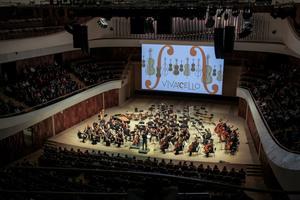 Открытие фестиваля Vivacello