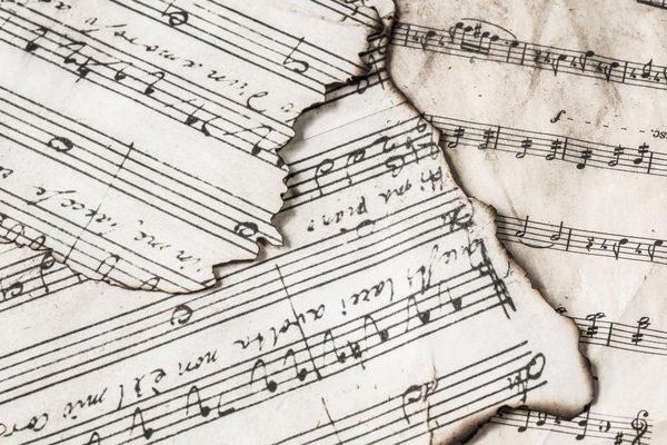 «Виртуозная музыка» для ксилофона с квартетом. Концерт в оранжерее