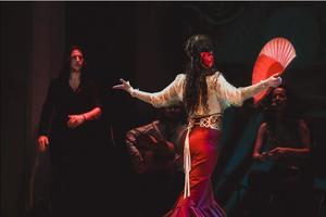 Страсти по Испании, или Фламенко Андалусии