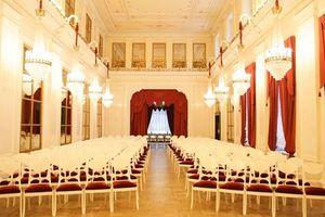 Новогодний Штраус-гала в Шереметевском дворце