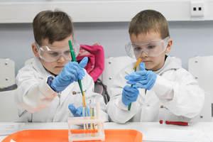 Детский фестиваль науки