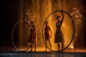 Cirque du Soleil. Luzia