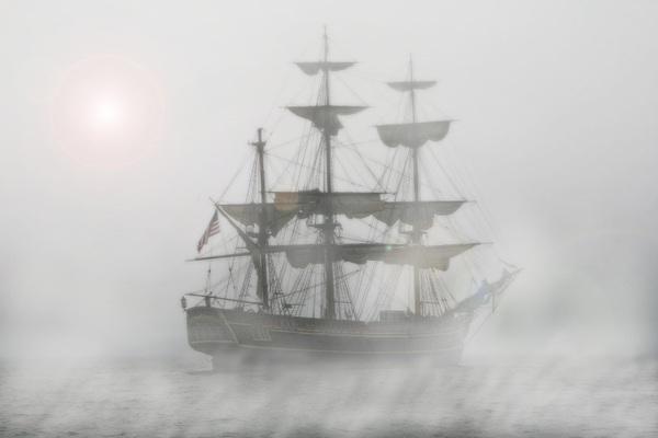 Пиратское гнездо