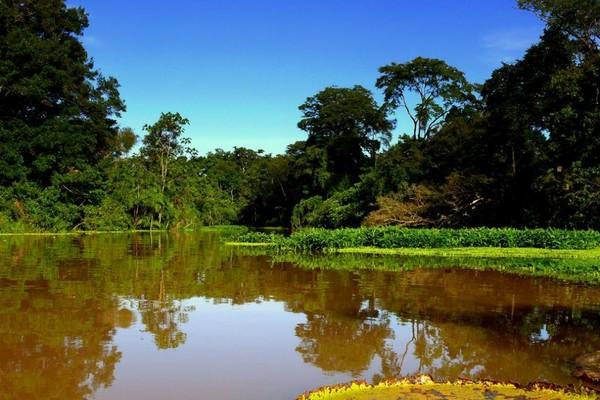 Перуанская Амазонка