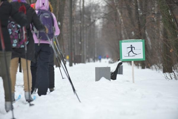 Лыжная трасса в Сокольниках