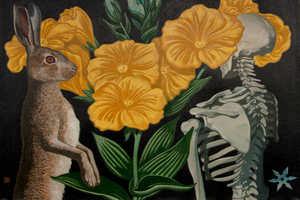Игорь Баранов. Herbarium