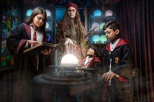 Гарри: школа чародейства и волшебства