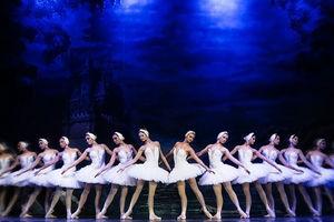 Балет «Лебединое озеро» театр Moscow State Ballet