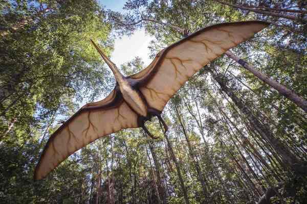 Путешествие динозавра