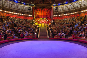 Большой московский цирк на Вернадского