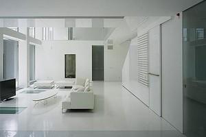 Чёрно-белый дом