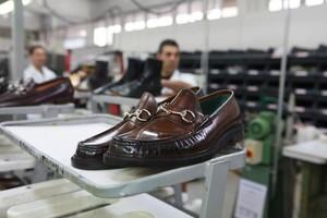 Shoe Shoe