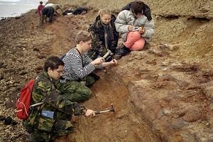 Геологическая школа