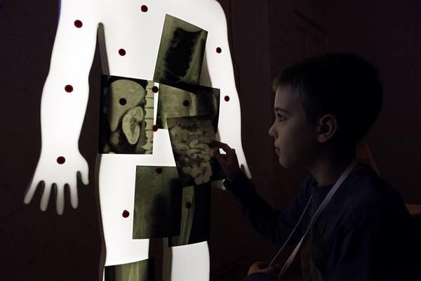 Научное шоу «Анатомия»