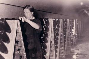 Завод шампанских вин