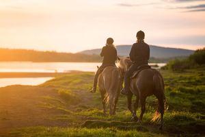 Места для конных прогулок