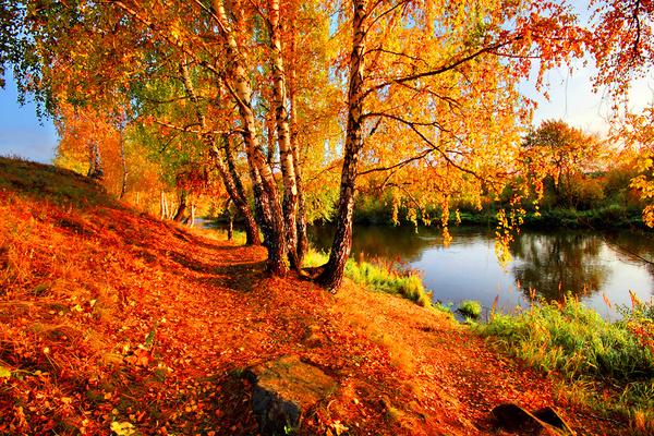 Где любоваться золотой осенью